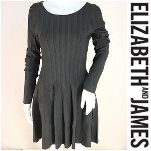 NWT $395 Elizabeth & James Vertical Viscose Dress